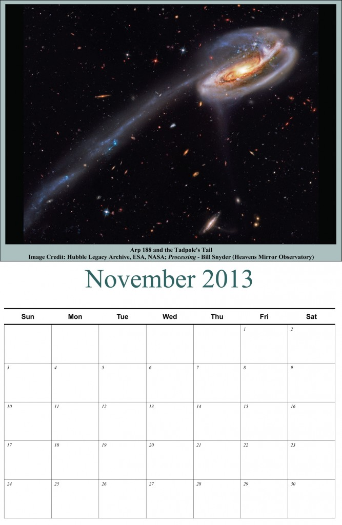 Apod-Calendar-Tadpole-image-for-webpage